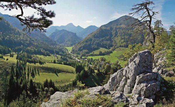 Dolné Rakúsko, Hory