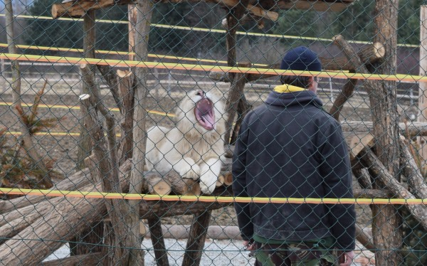 Liptovský mikuláš Zoo kontakt