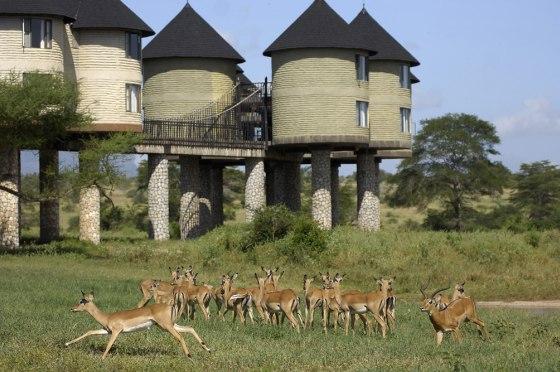 Sarova TSavo hotel Keňa