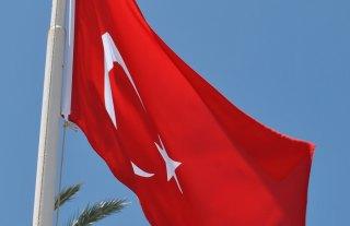 Turecka vlajka