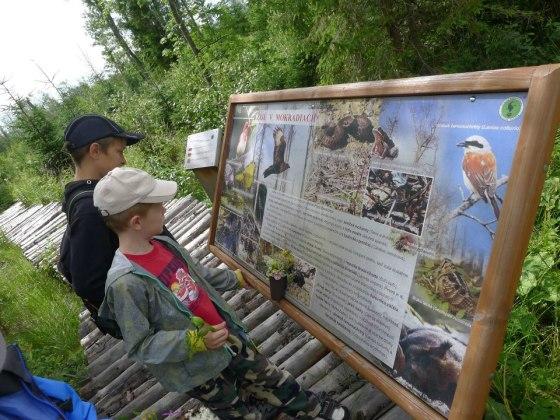 Turistika a vtáky